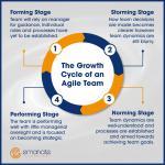 The Growth Cycle of an Agile Team